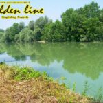 Carpfishing in Tanaro con Golden Line