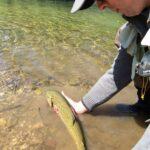 Pesca a mosca in centro Italia