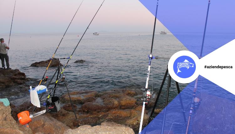 Pesca a rockfishing 2019 | Il Paradiso del Pescatore